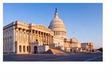 The Capitol Hill - Washington D.C. - Morning Shot