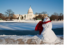 Capitol Hill on a sunny winter day - Snowman in front