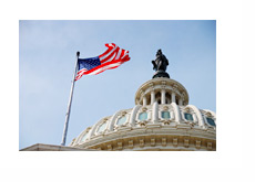 Capitol Hill - United States Flag - Photo