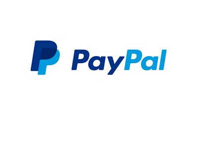 Paypal company logo - Year 2015