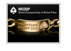 World Championship of Online Poker - WCOOP - 2013 - Collage