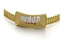 The World Series of Poker (WSOP) 2013 - Gold Bracelet