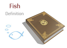 What does Fish mean in poker?