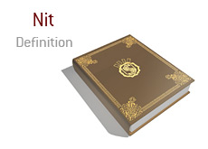 meaning of nit