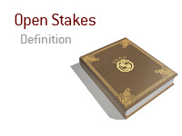 Definition and meaning of Open Stakes in the game of poker - King Dictionary