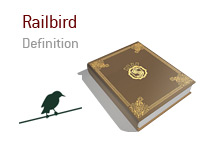 Definition and meaning of Railbird in poker