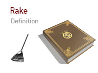 Definition of the term Rake in poker - Illustration